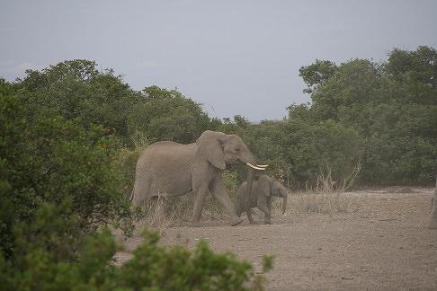 Ele & baby in Tanzania