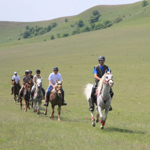 Ride fit, happy horses. Riding holidays in Transylvania with In The Saddle.
