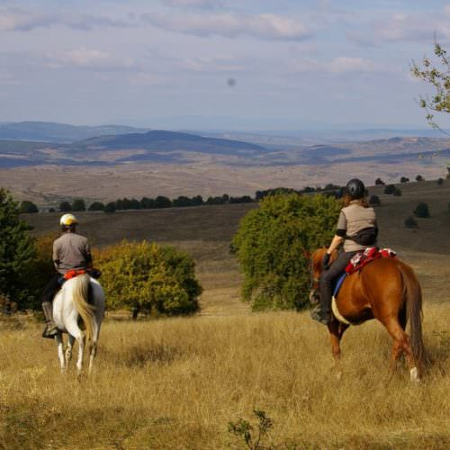 Perfect riding country. Riding holidays in Transylvania with In The Saddle.
