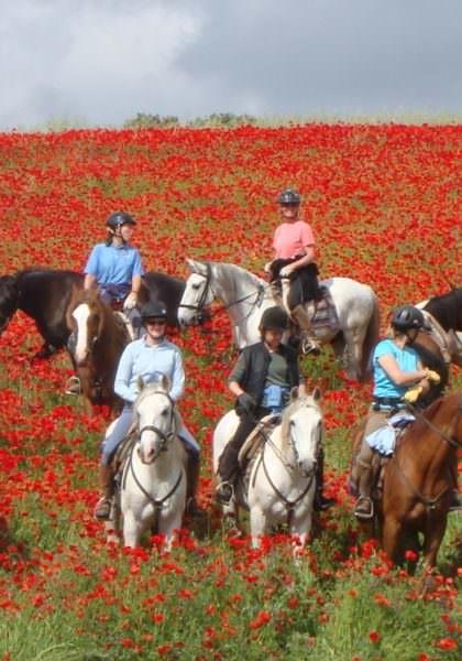Riding in the Alentejo, Portugal