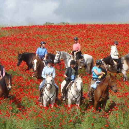 Riding in the Alentejo, Portugal