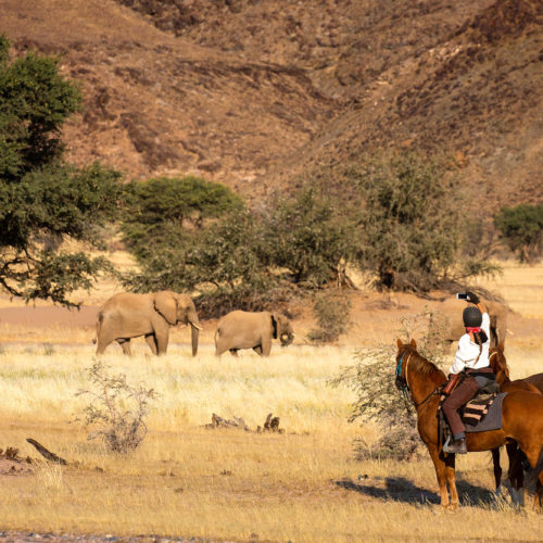Damaraland rides