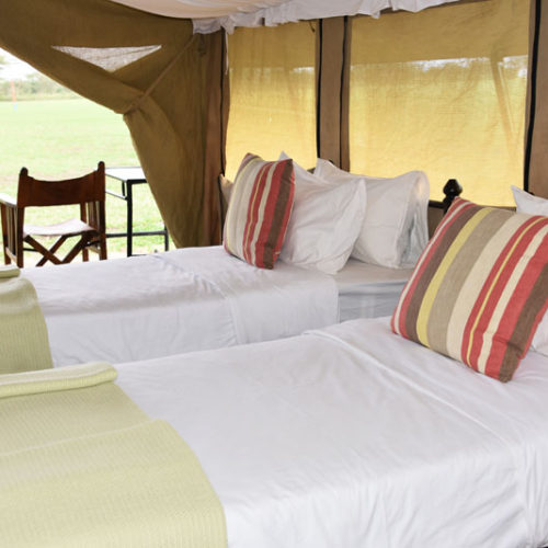Polo club twin tent
