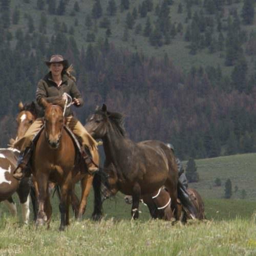 Rocking Z Ranch, Montana