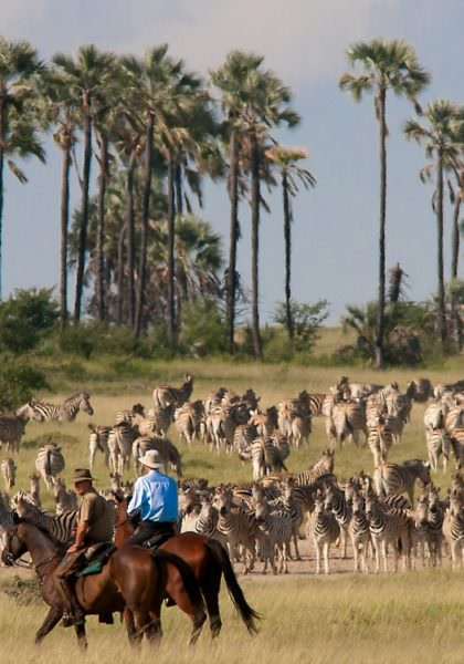 Kalahari horseback safari with David Foot into the Makgadikgadi Pans