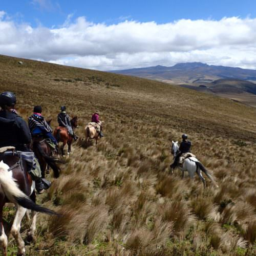 Horse riding Ecuador