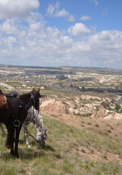, Home, In The Saddle