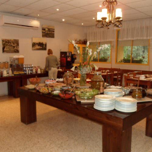 Dalia Kibbutz Breakfast