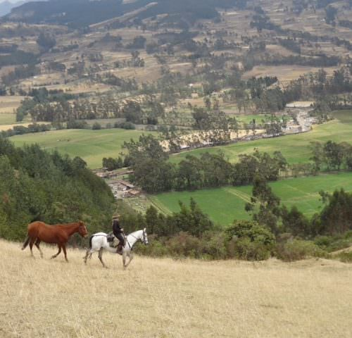 Zuleta valley riding
