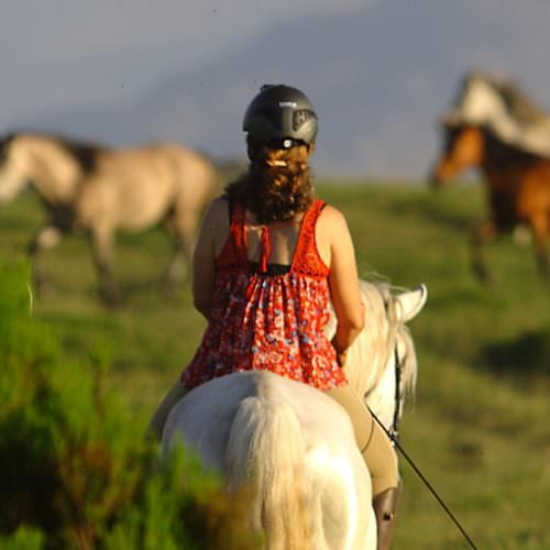 Riding with wild horses in Portugal