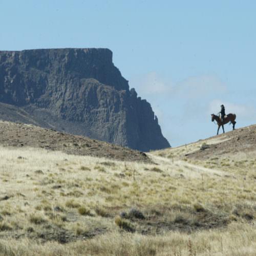 Lone horse rider in Argentina. Estancia Huechahue
