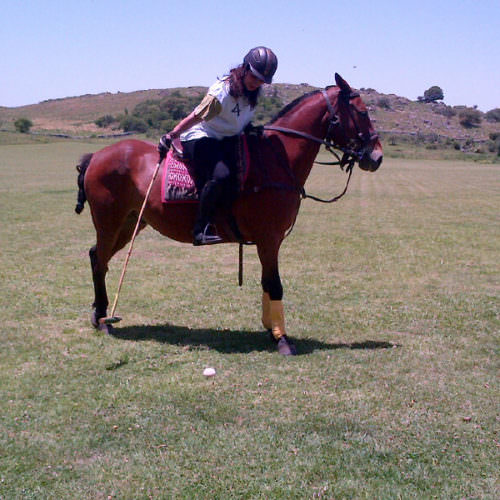 Learning Polo in Argentina. Estancia Los Potreros