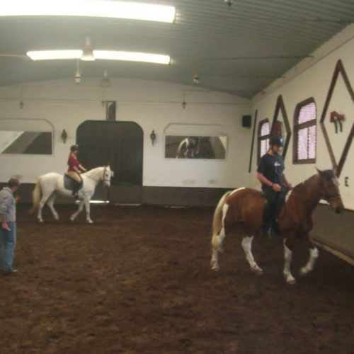 Learn to Ride Holidays on the Azores. In the indoor arena.