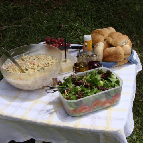 Picnic lunch. Learn to Ride Holidays on the Azores