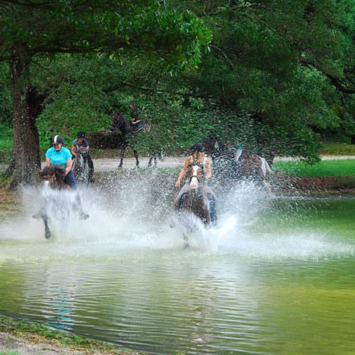 Cantering on the lake shores. Riding Holidays - Azores.