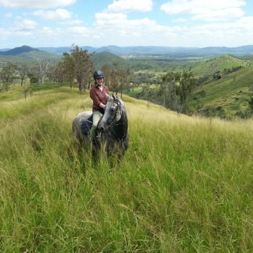Horse riding through long grass. Beautiful views on a riding