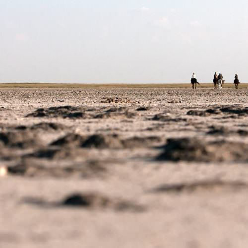 The Kalahari Riding Safari takes you into the Makgadikgadi salt pans of Botswana. Horses