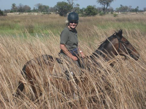 In The Saddle. Riding Safari at Macatoo, Okavango Delta, Botswana. Horses in the bush.