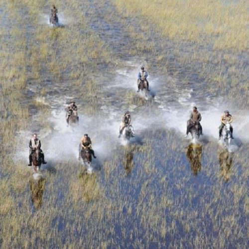 In The Saddle. Riding Safari Holiday at Macatoo, Okavango Delta, Botswana. Galloping through the water.