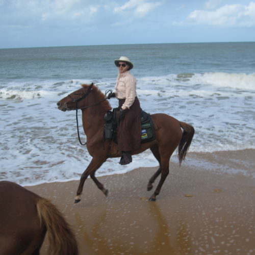 Riding Holidays in Brazil. Beach riding in Bahia. Horse by the ocean.