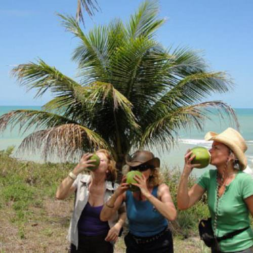 Riding Holidays in Brazil. Beach riding in Bahia. Riders drinking from coconuts.