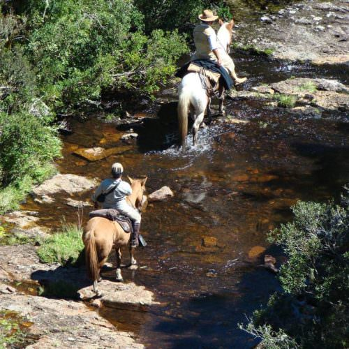 Riding Holidays in Brazil. Trail riding vacation. Horses splashing in stream
