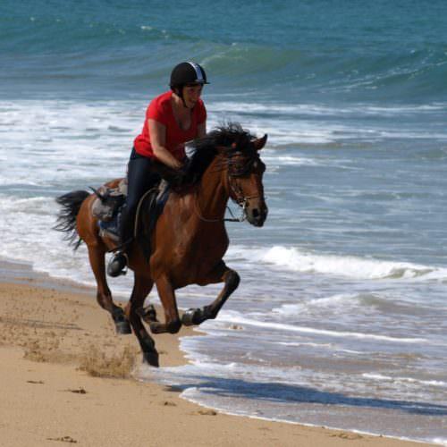 Horse Riding, Spain, Los Alamos
