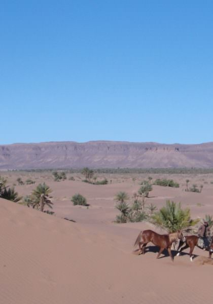Riding in the Moroccan desert