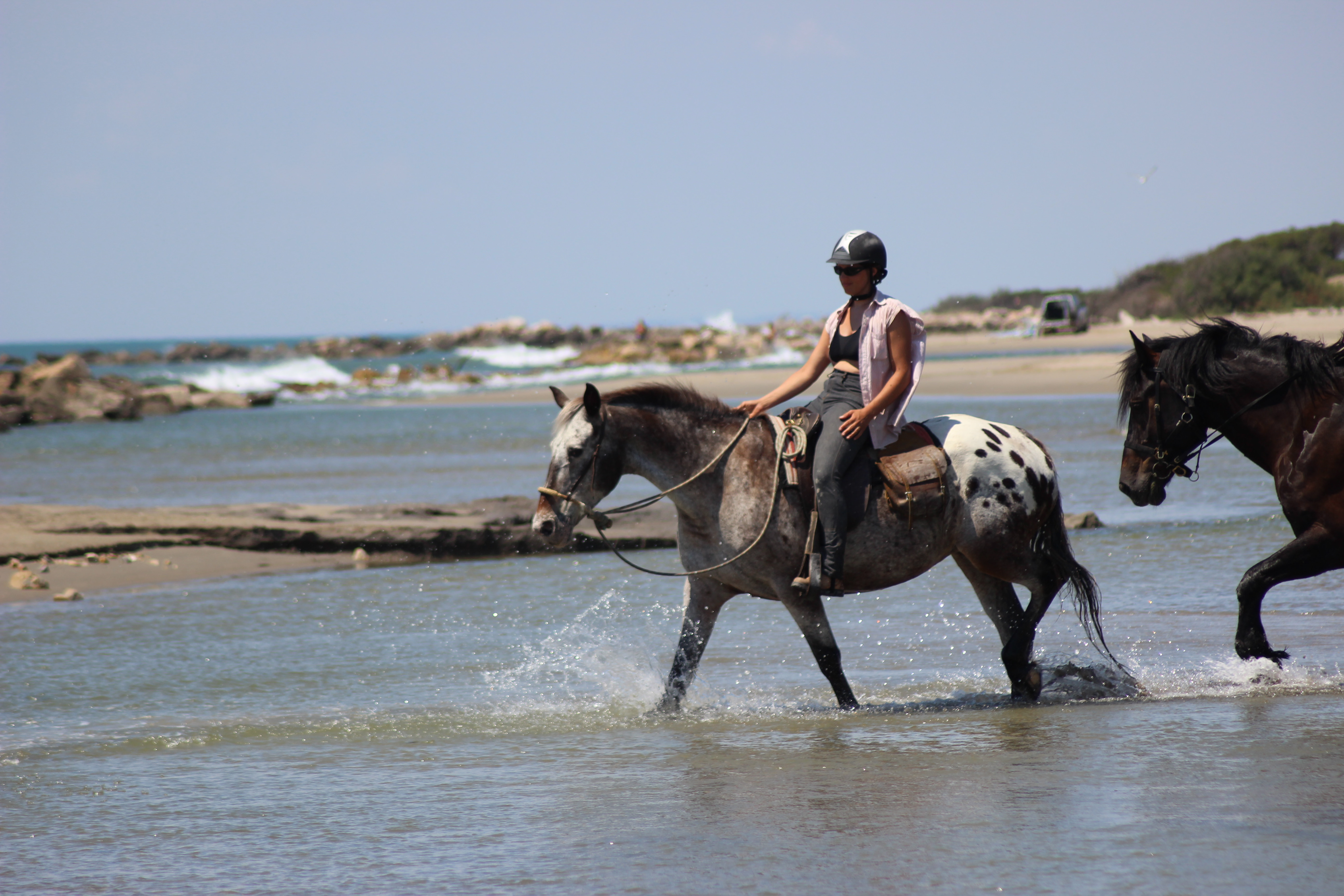 Provence Trails - Rides - In The Saddle