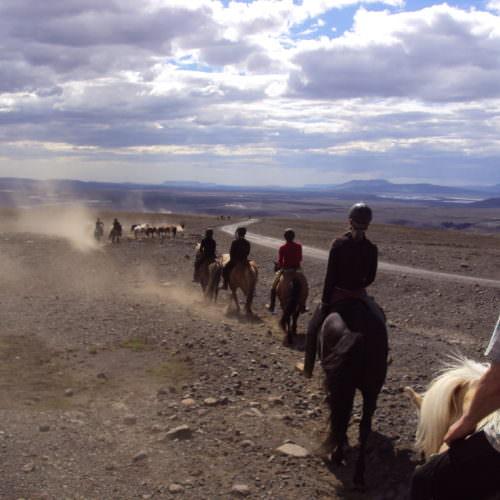Iceland desert riding