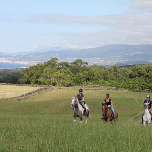 azores, quinta da terca, horse riding