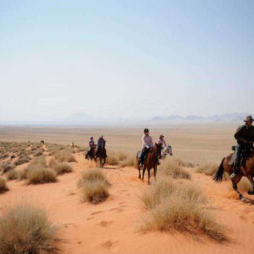 Great views of the Namib Desert