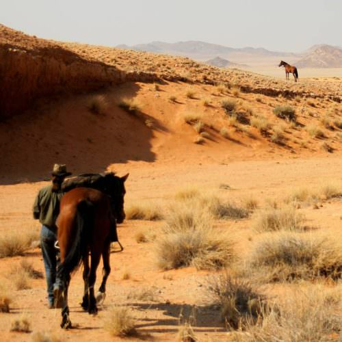 Horse riding holiday in Namibia