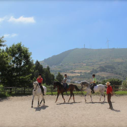 A group lesson in the outdoor arena