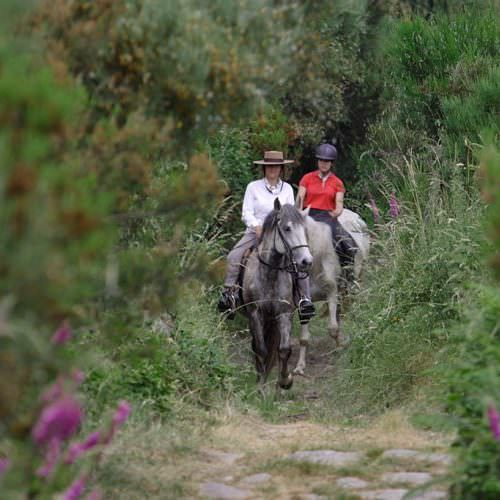 Knowledgable guides lead you through the trails of the Peneda-Gerês National Park.