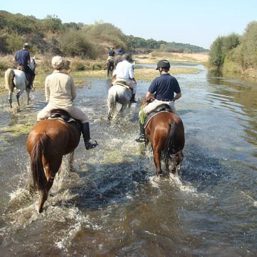 Trail rides at Monte Velho