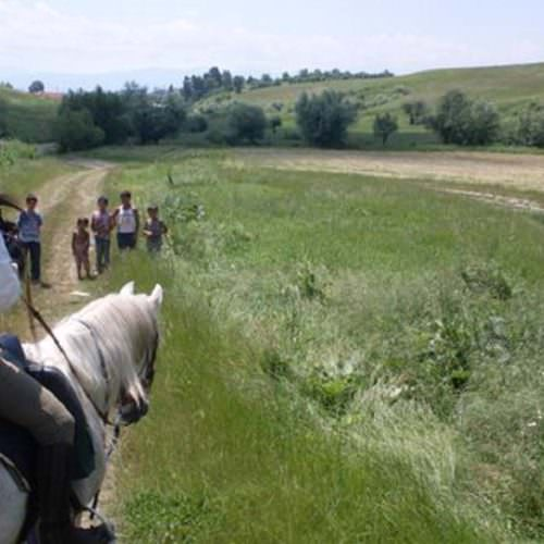 Riding holidays in Transylvania with In The Saddle. Horses
