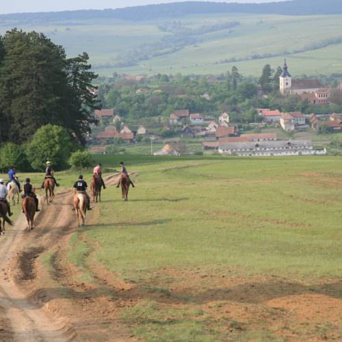 Riding holidays in Transylvania with In The Saddle. Horses cantering.