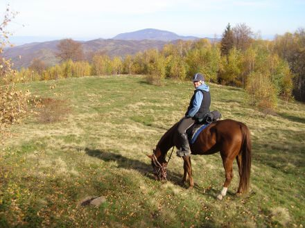 Riding holidays in Transylvania with In The Saddle. Horse and rider