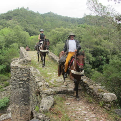 Adventurous trail riding holiday through the Pyrenees Mountains, Spain. Horses off beaten track