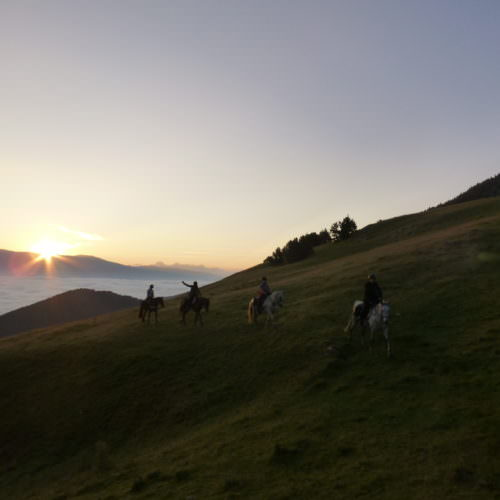 Adventurous trail riding holiday through Pyrenees Mountains, Spain. Horses, spectacular views, sunset
