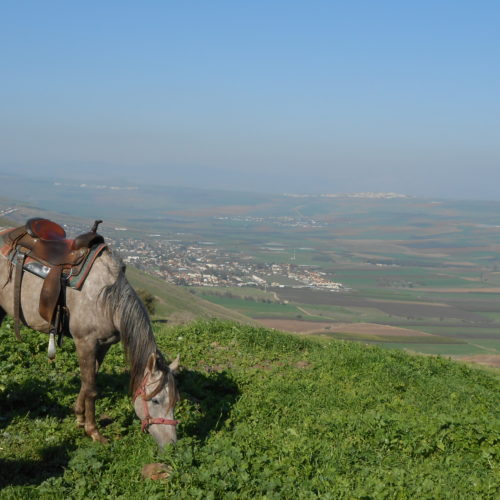 Israel riding view