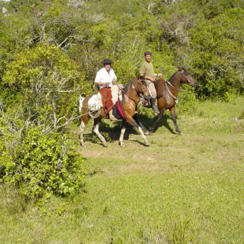 Uruguay - gaucho