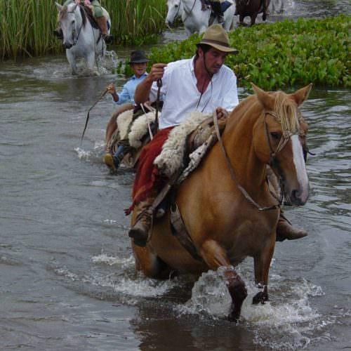 Uruguay - wetlands