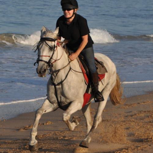 Spain, Horse Riding, Los Alamos
