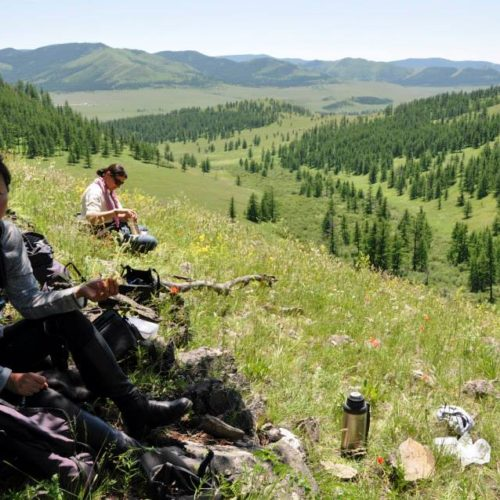 Mongolia picnic