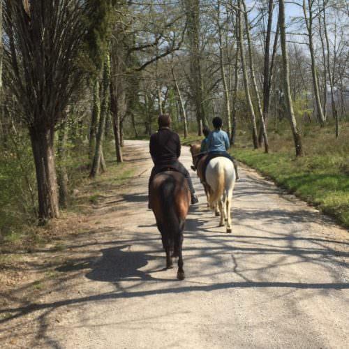 Riding at Centro Ippico Berardenga