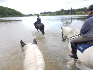 Castle Leslie competition, Winners of the Castle Leslie competition, In The Saddle