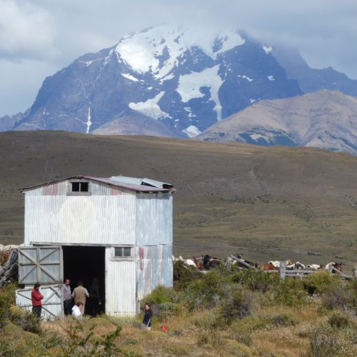 Journey on horseback from Tercera Barranca