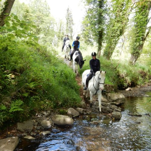 Ireland, Castle Leslie, estate riding